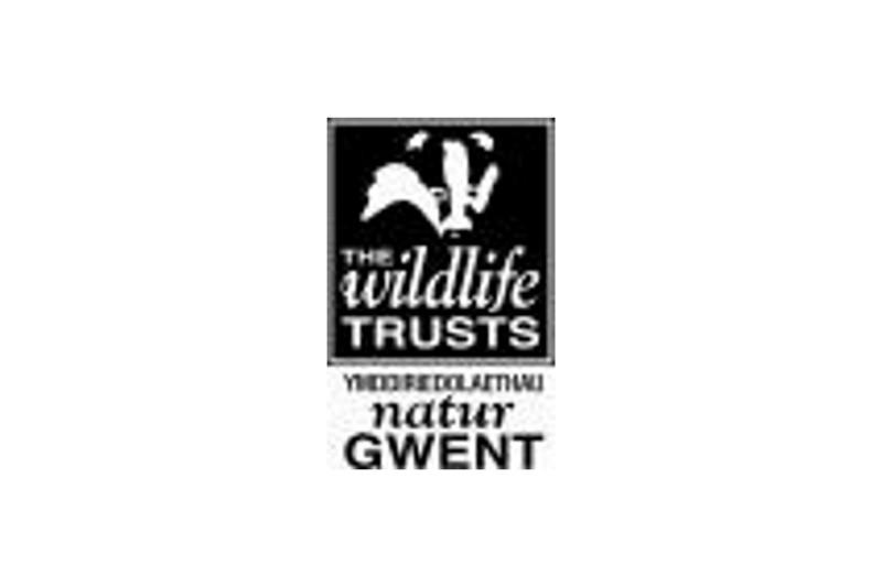 Gwent-wildlife-trust-logo-revised